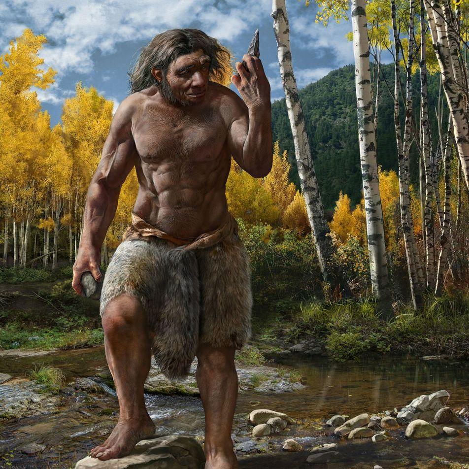 """El cráneo del """"hombre dragón"""" podría ser de una nueva especie, lo que cambiaría el árbol ..."""