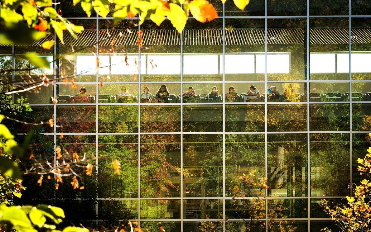 La luz natural infunde la escuela primaria Manassas Park de Virginia, una de las escuelas de ...