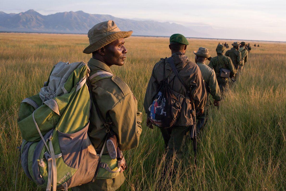 Los guardabosques y los soldados del ejército congoleño realizan una patrulla de largo alcance para localizar ...