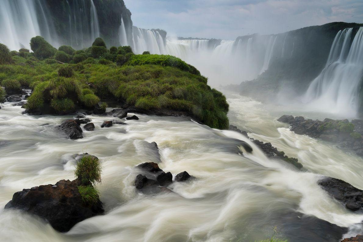 En 1993, las naciones de todo el mundo se comprometieron a proteger la biodiversidad mediante la ...