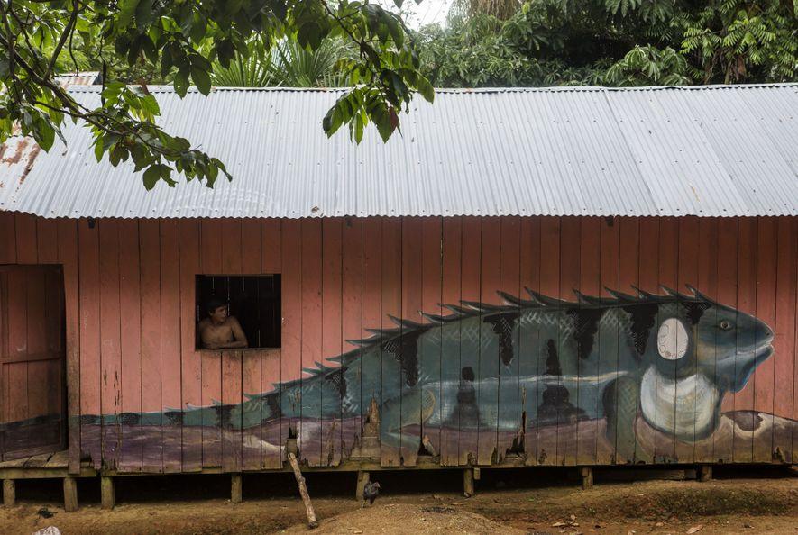 Todas las casas de Mocagua están pintadas con coloridas representaciones de la fauna silvestre del lugar, ...