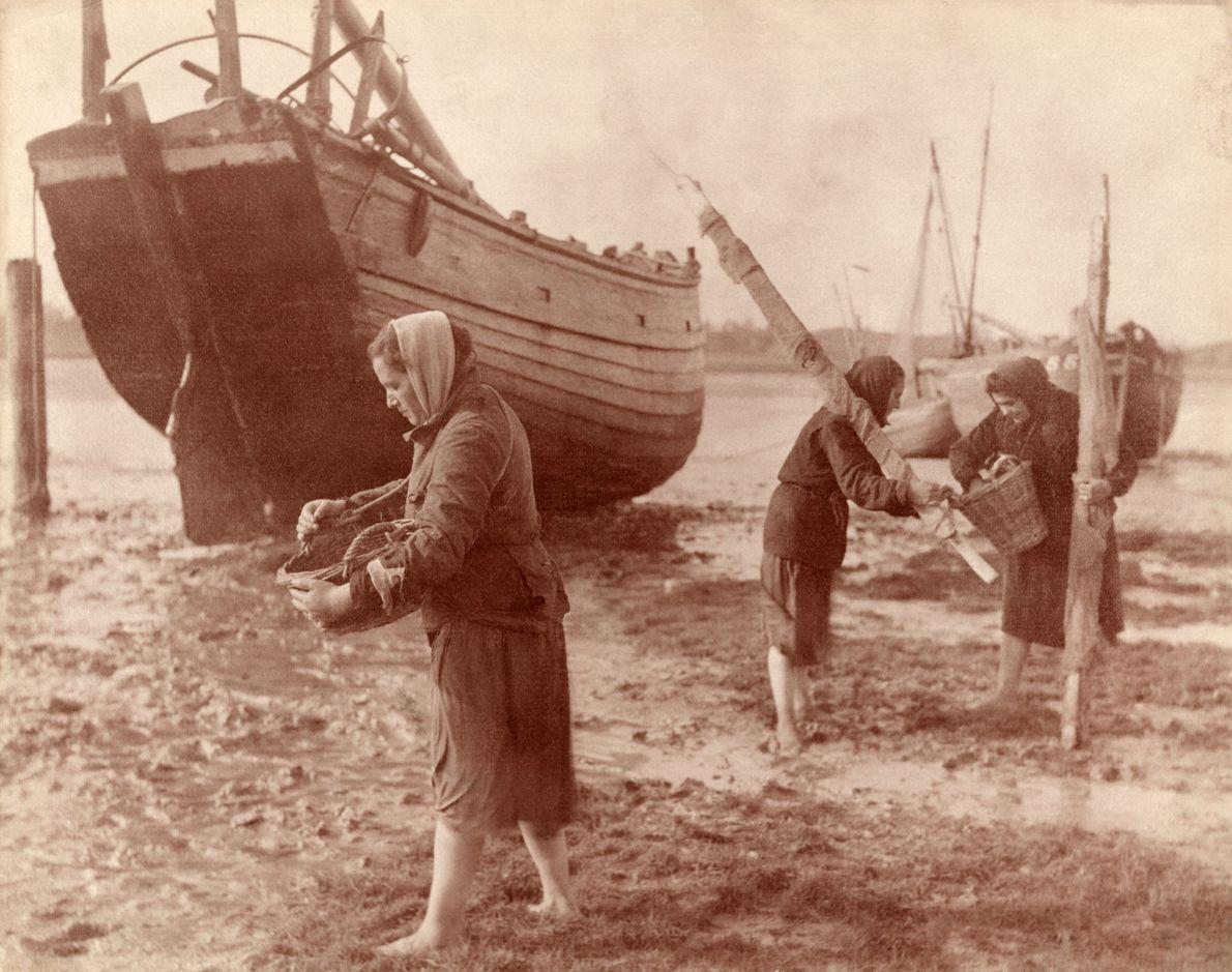 Las mujeres trabajan descalzas mientras recogen ostras en 1914 a lo largo de la orilla del ...