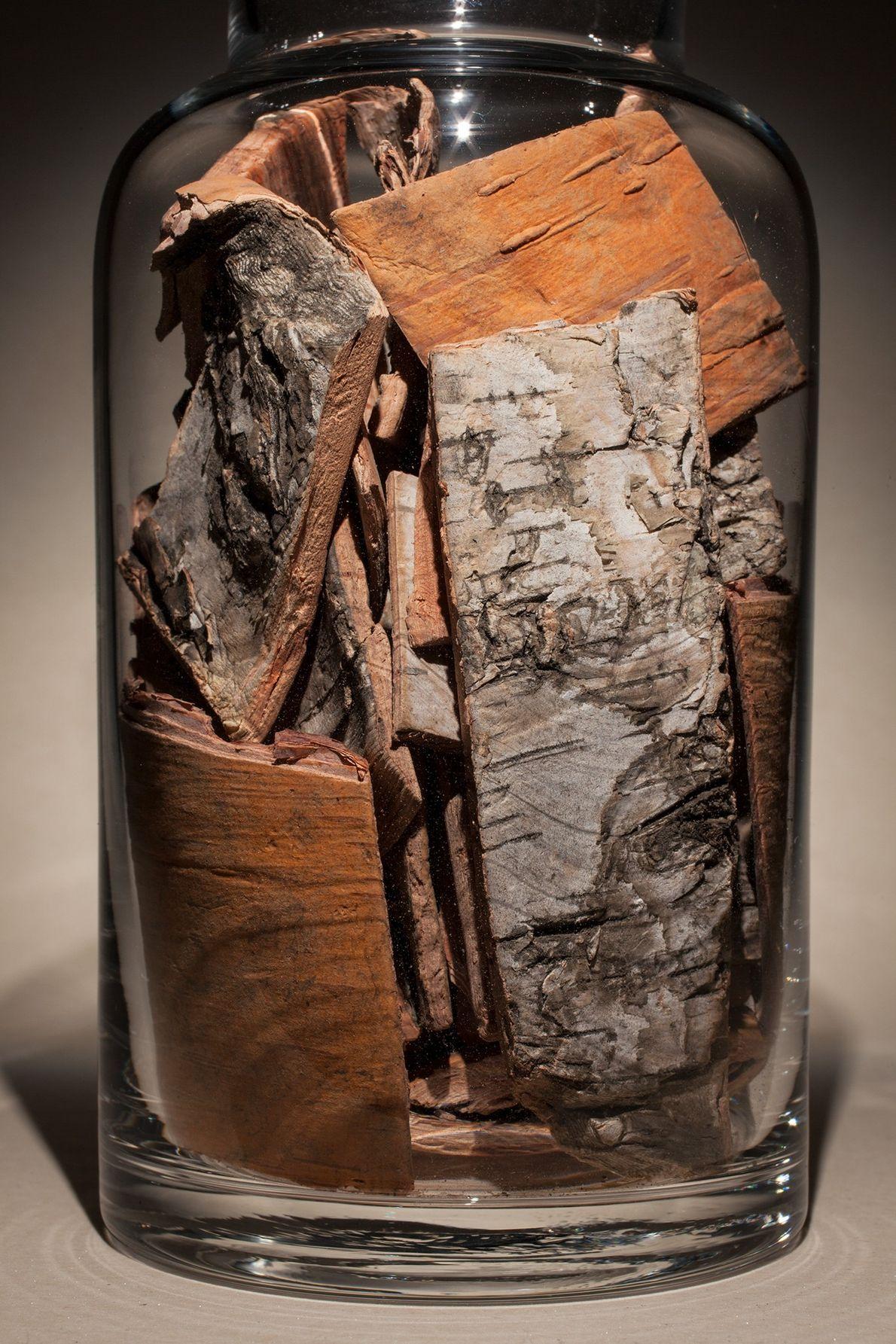Nombre común: Corteza de abedul asiático Latín: Betula platyphylla Chino: Hua mu pi Usos: Alivia la tos y las ...