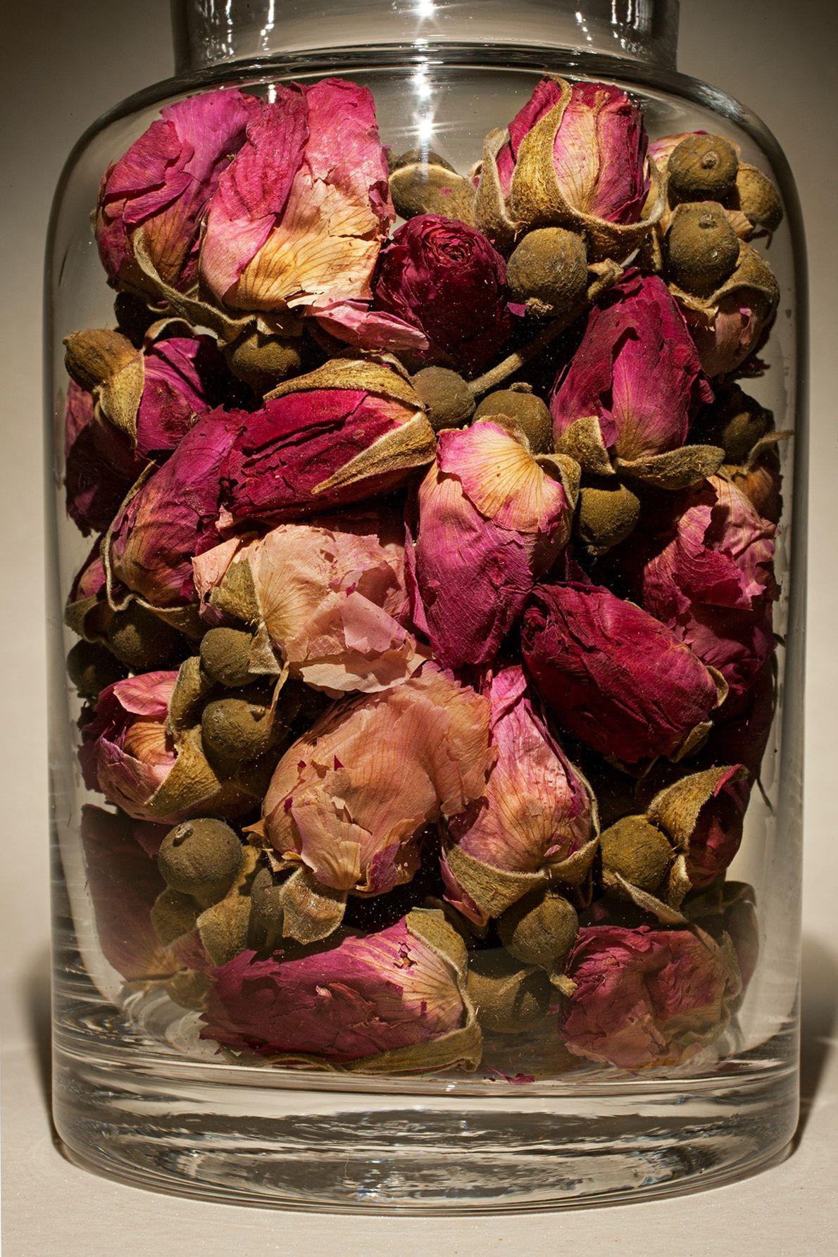 Nombre común: Capullo de rosa Latín: Rosa rugosa Chino: Mei gui hua Usos: Indigestión, distensión