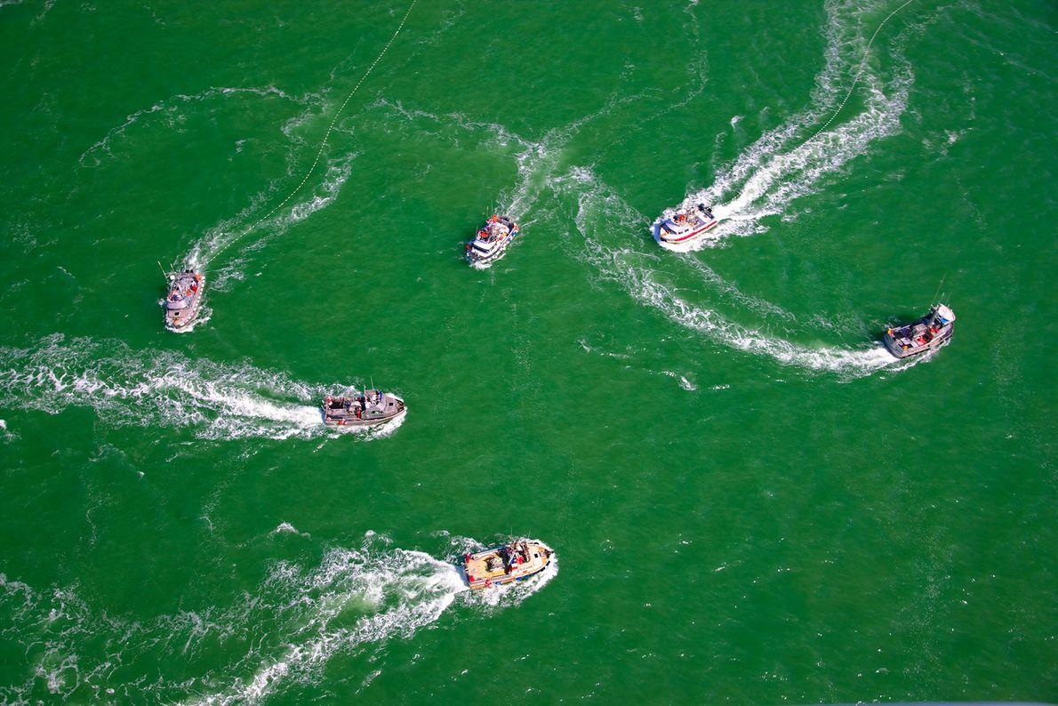 Los barcos de pesca de salmón en Bristol Bay, Alaska. En el año 2006, Estados Unidos ...