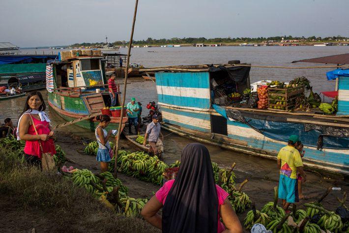 En la orilla del Amazonas en Leticia, la gente transporta toneladas de plátanos. La pesca, la ...