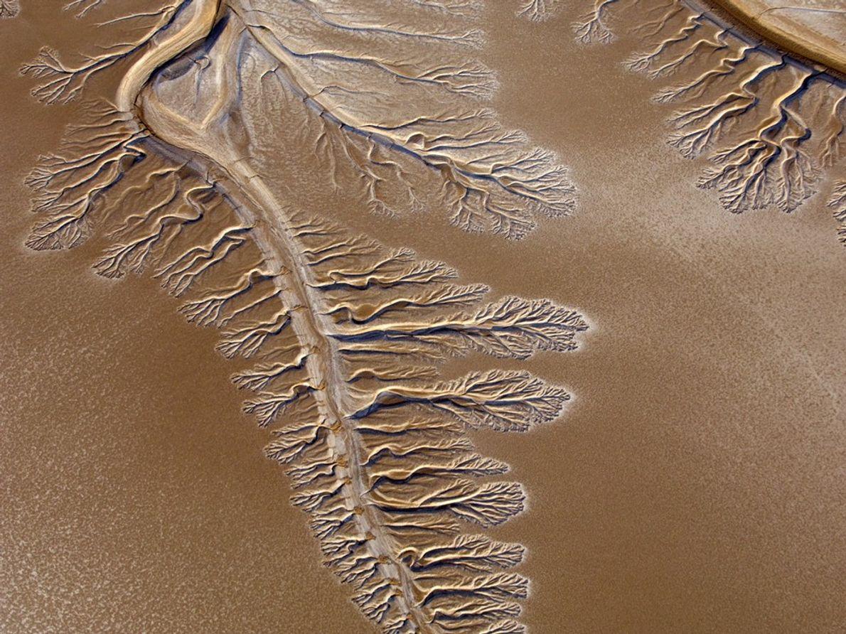 Hermosos rulos ocupan el ahora seco delta del río Colorado.