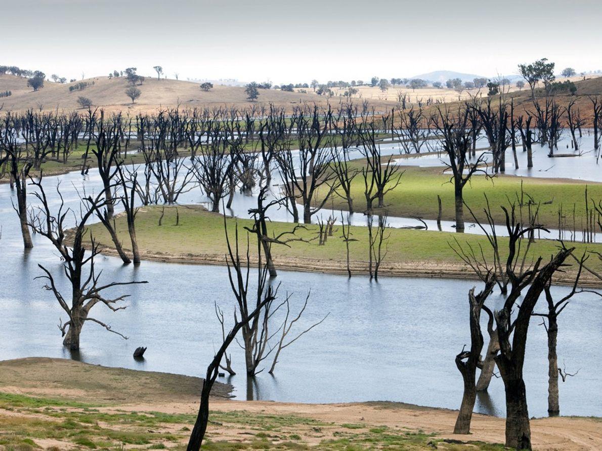 La mayor parte de Victoria y Nueva Gales del Sur en Australia ha estado presa de ...