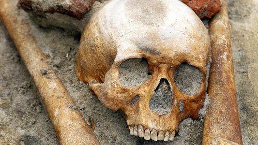Arqueólogos sospechan de un entierro de vampiros