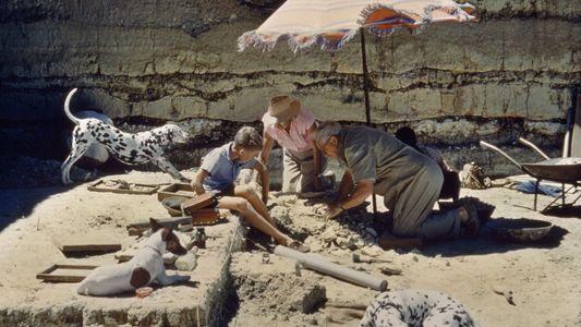 Imágenes que capturan lo maravilloso y emocionante de la Arqueología