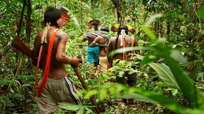 Guerreros de la selva tropical: cómo las tribus indígenas protegen el Amazonas