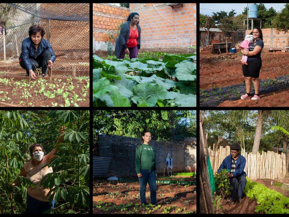 Sembrando resistencia en Ñemby: autocultivo de alimentos en Paraguay