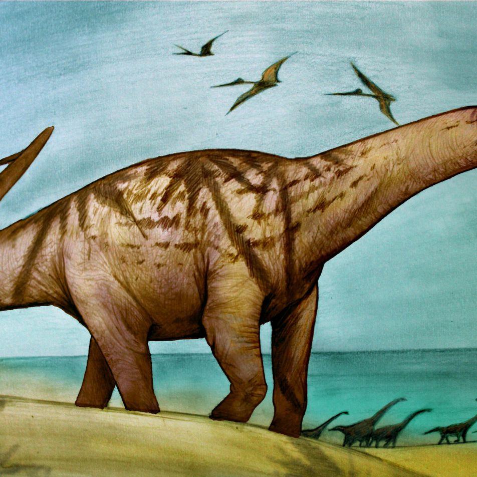 Argentina: descubren nueva especie de dinosaurio herbívoro en la Patagonia