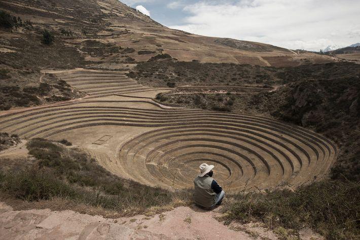 El guardaparque Tomás Huamanttica Quispe contempla el desértico Centro Arqueológico de Moray en el otoño de ...