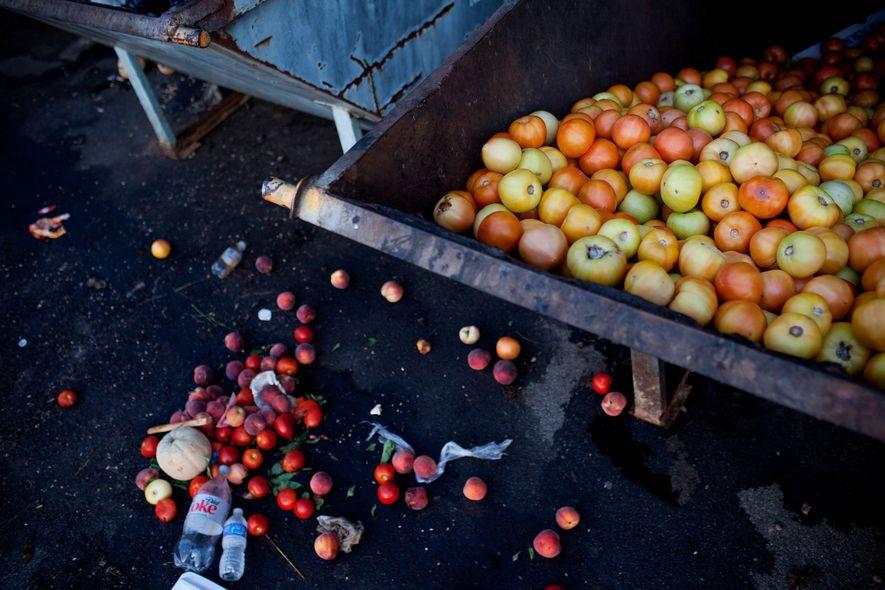 Los tomates no vendidos llenan un contenedor de basura en un mercado de agricultores en Asheville, ...