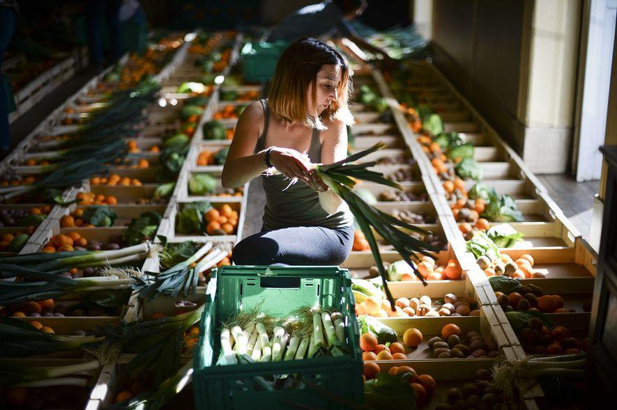 La belleza está en el ojo del consumidor en la cooperativa Fruta Feia (fruta fea) en ...