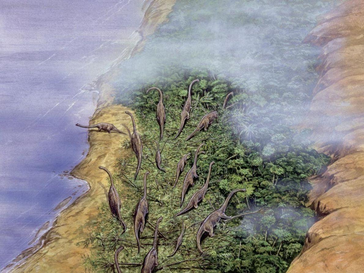 Una manada de braquiosaurios se reúne en una costa boscosa en esta reproducción artística. Con un ...