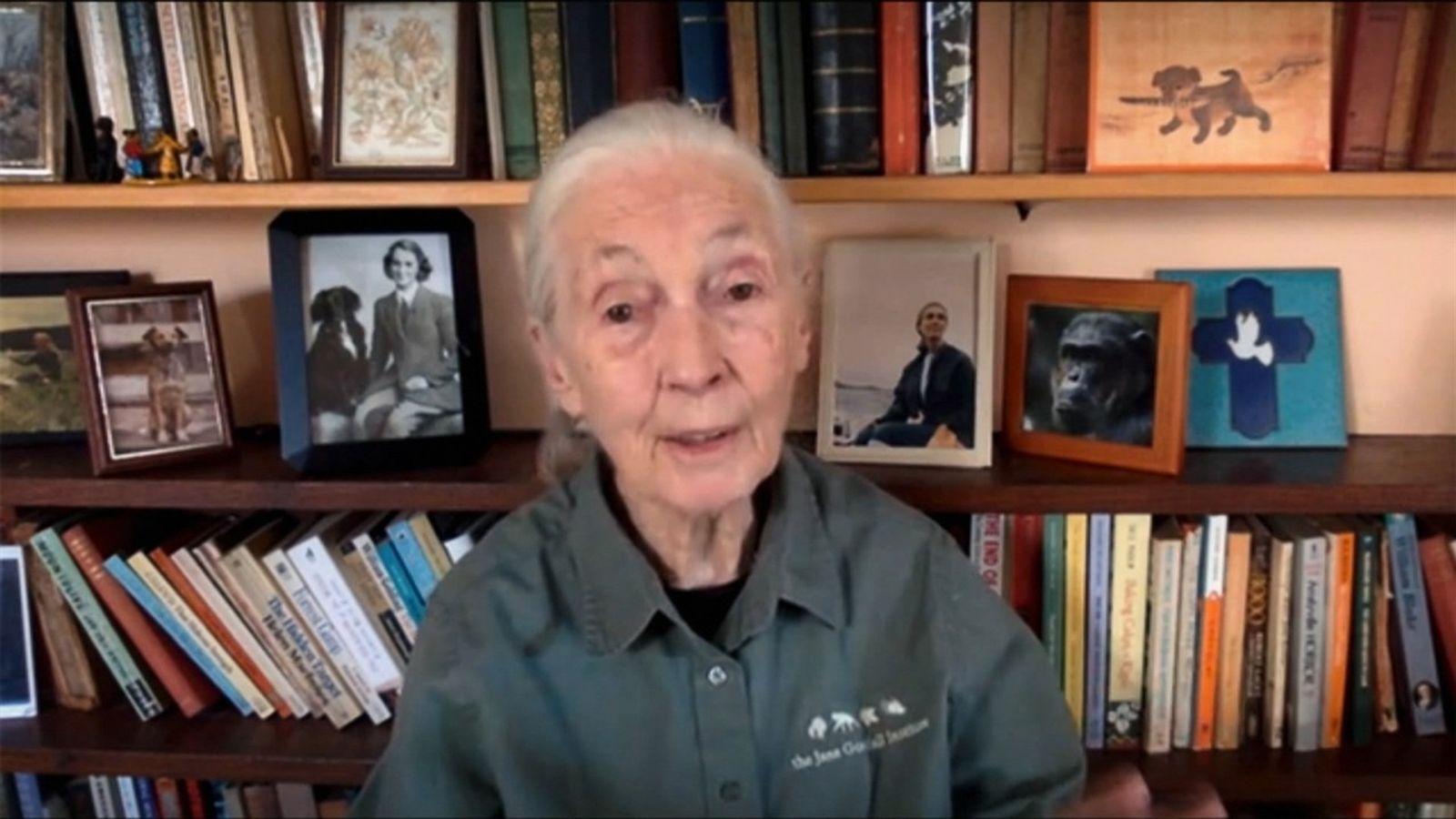 "Jane Goodall: ""Hay que aprender a vivir con menos"""