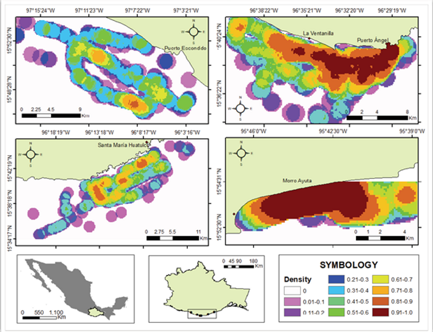 Mapa donde se representan las agregaciones de tortugas marinas en la costa central de Oaxaca, México. ...