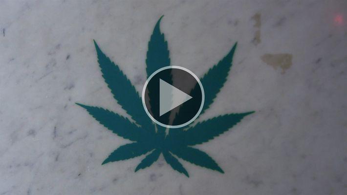 Explorer Investigation: Marihuana Medicinal: Farmacia