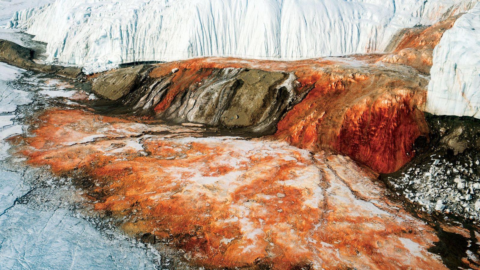 Las Cataratas de Sangre de la Antártida, reciben su nombre por su inusual color rojo amarronado. ...