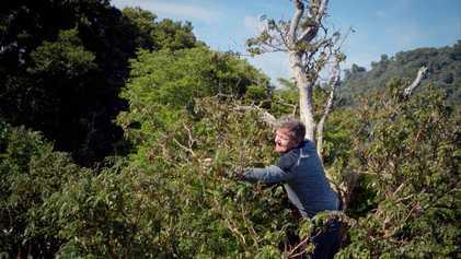 Gordon Ramsay: Sabores Extremos: Una cosecha extrema