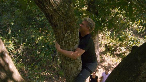 Gordon Ramsay: Sabores Extremos: Gordon trepa un árbol en Perú en busca de un ingrediente