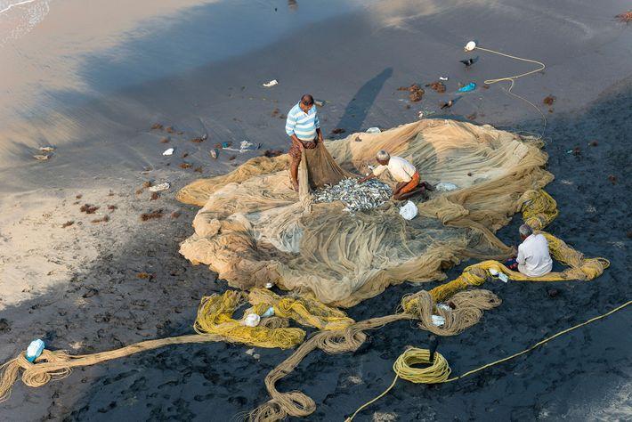 Los pescadores inspeccionan sus redes en Varkala, Kerala.
