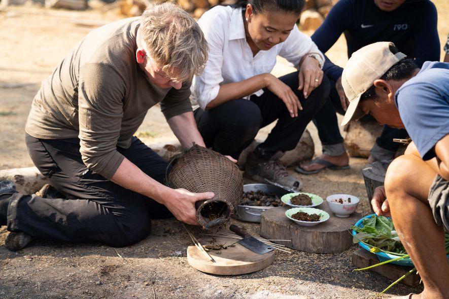 """Gordon Ramsay aprende cómo preparar insectos denominados """"mordedores de dedos del pie"""" por un cocinero local ..."""