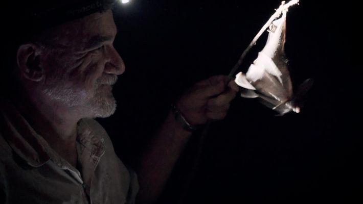 Exploradores en acción: Rodrigo Medellín
