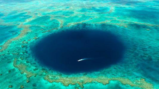 Mira dentro de un misterioso agujero azul en la Gran Barrera de Coral