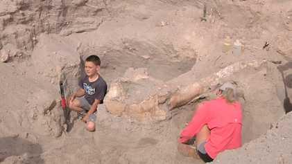 Niño se tropieza y descubre un fósil de un millón de años