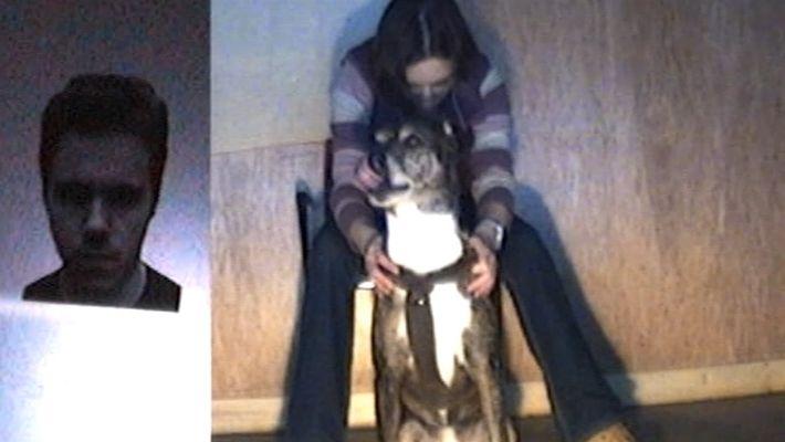 Investigación sugiere que los perros entienden las emociones humanas
