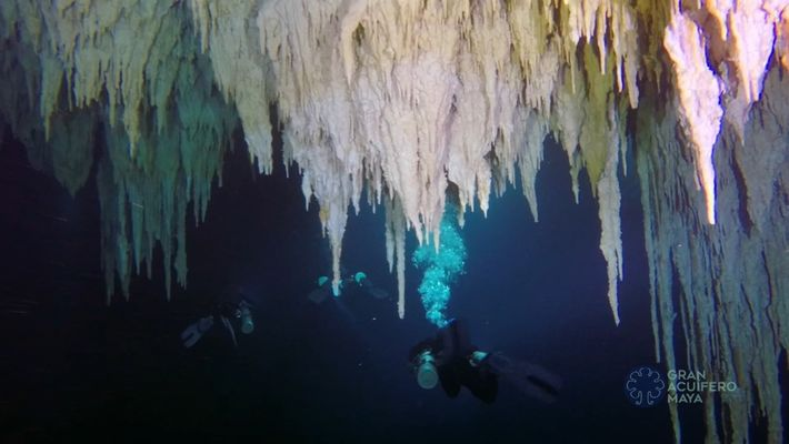 Explora la cueva submarina más grande del mundo, en la península de Yucatán