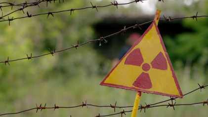 Las especies mutantes de Chernóbil pueden ayudar a los astronautas  | One Strange Rock
