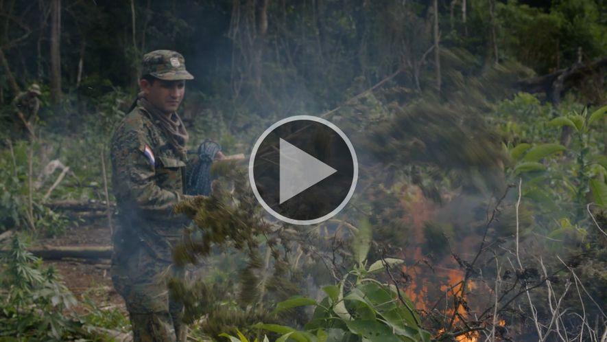 Explorer Investigation: Marihuana Medicinal: Paraguay