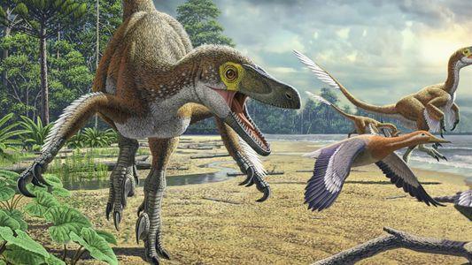 Dinosaurios 101