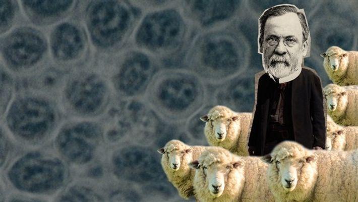 Louis Pasteur y el descubrimiento médico que salvó vidas