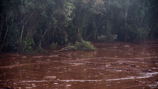 Brasil: la tragedia de Brumadinho en imágenes - Parte I