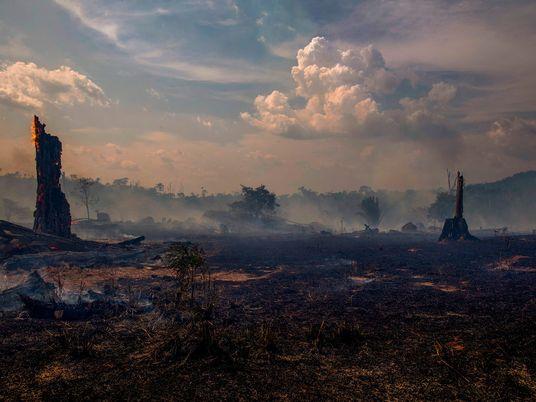 Una intensa temporada de huracanes en el Atlántico podría implicar más incendios en la Amazonía