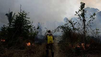 Amazonía: cuánto está ardiendo en la actualidad, comparado con años anteriores