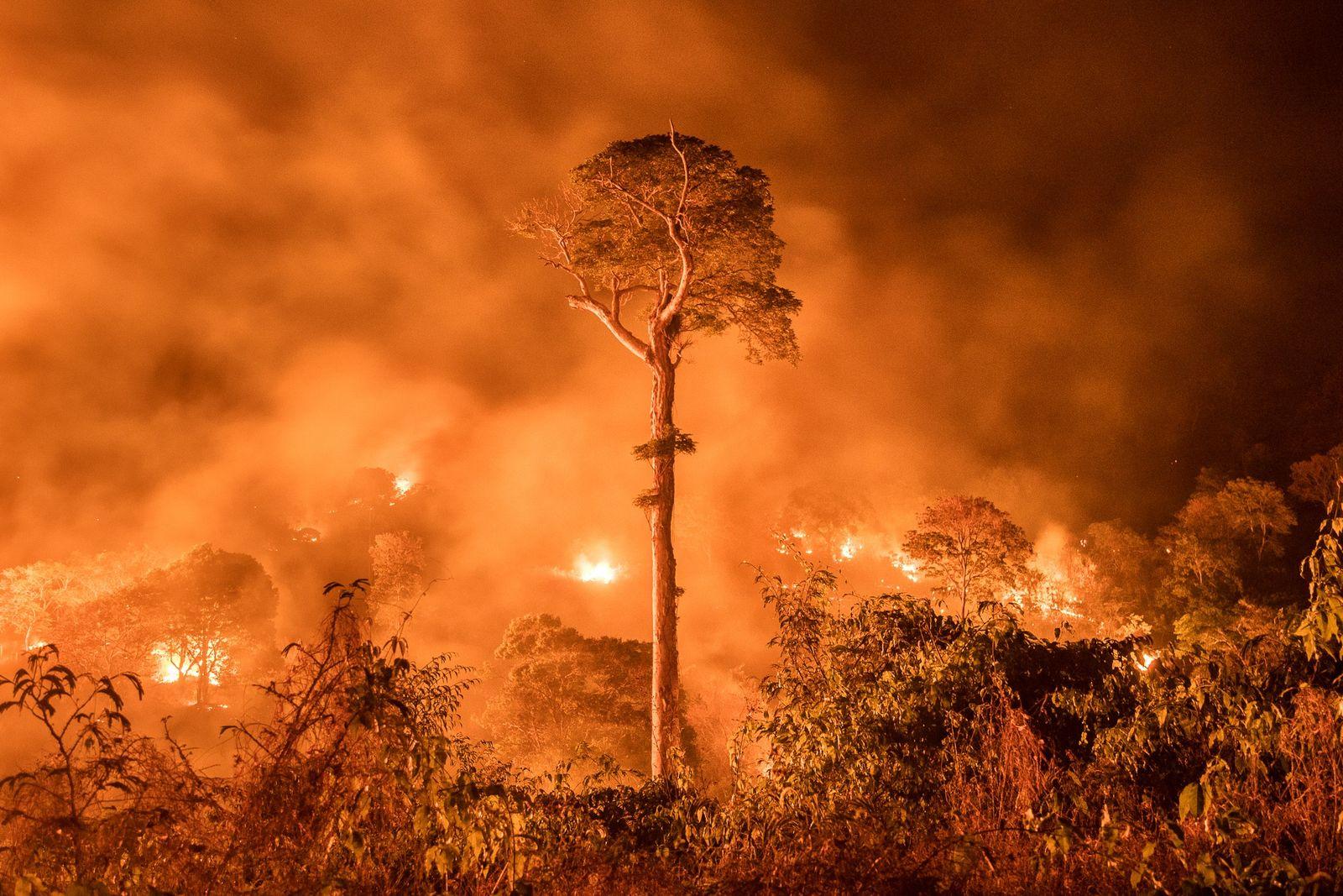 Un incendio fuera de control en el estado brasileño de Maranhão. Aunque los incendios son habituales ...