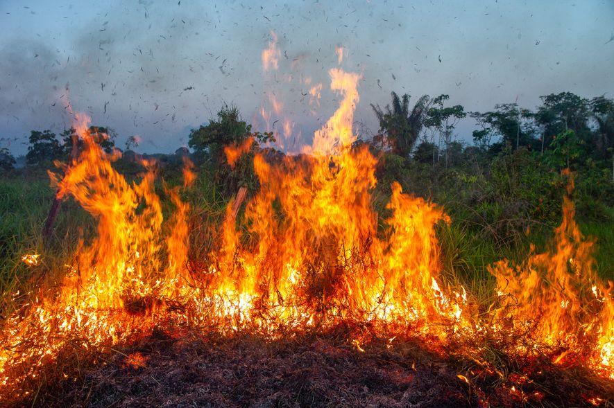 Un incendio al lado de una ruta arde en el estado de Acre. Durante los meses ...