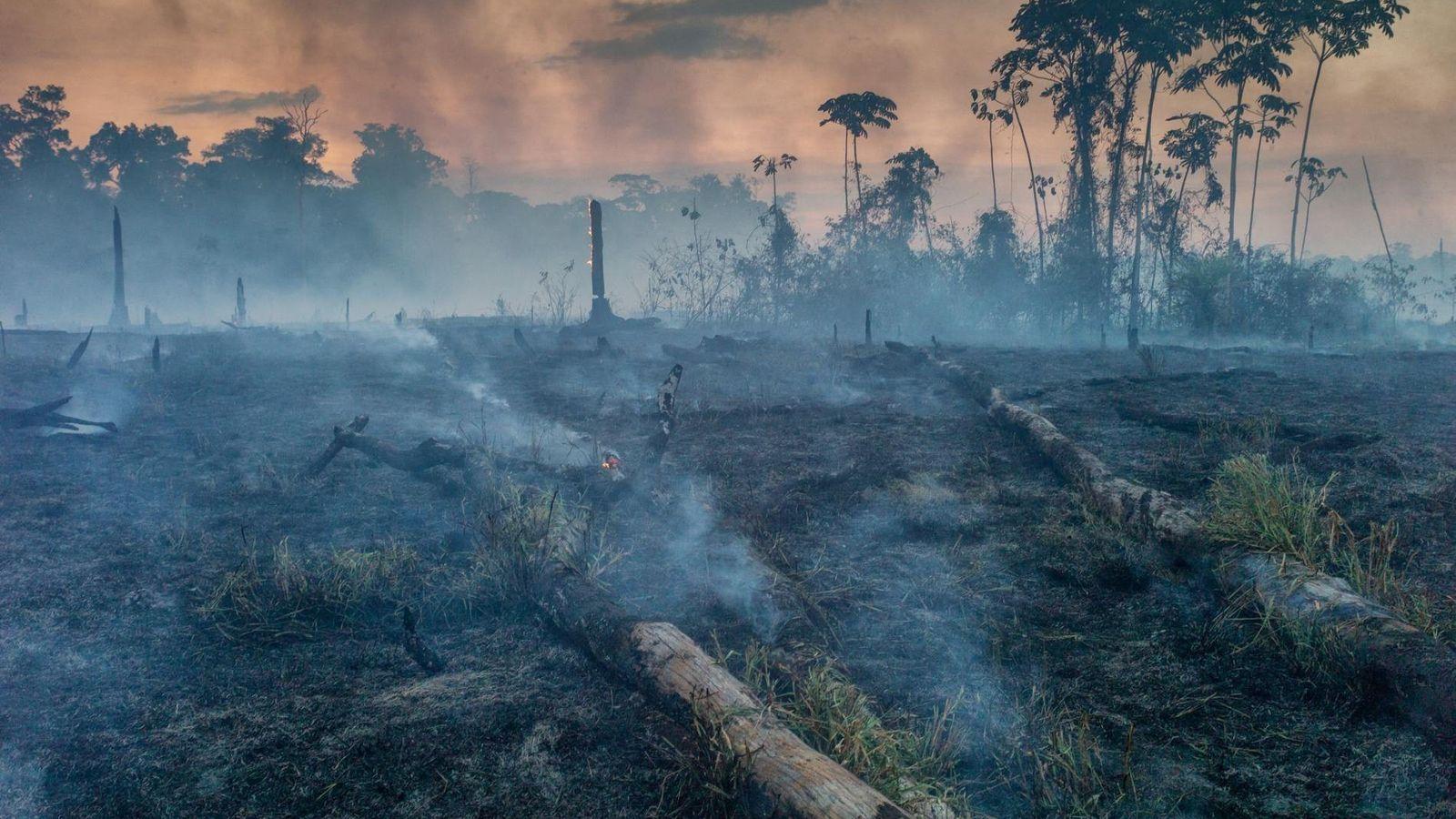 amazon-fires-1