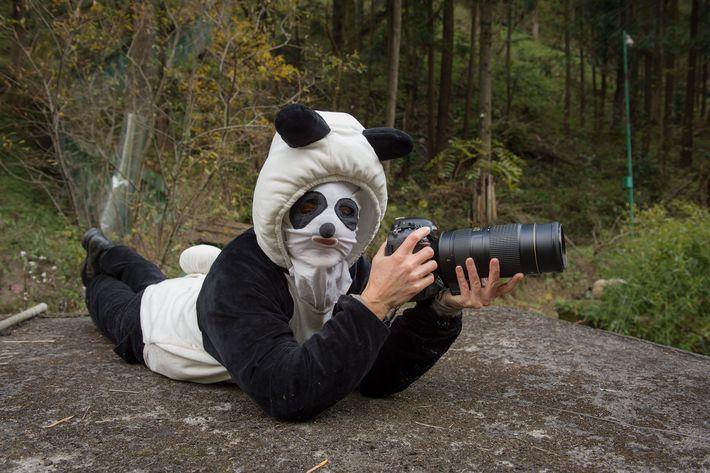 Ami Vitale vistió un disfraz especial al fotografiar pandas en el Centro de pandas de Wolong ...