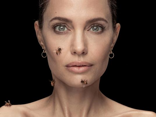 Angelina Jolie abraza a las abejas y resalta el trabajo de las apicultoras como guardianas del ...