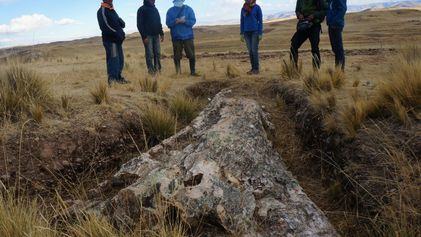 Un árbol fosilizado de 10 millones de años ofrece indicios sobre cómo fueron los Andes peruanos ...