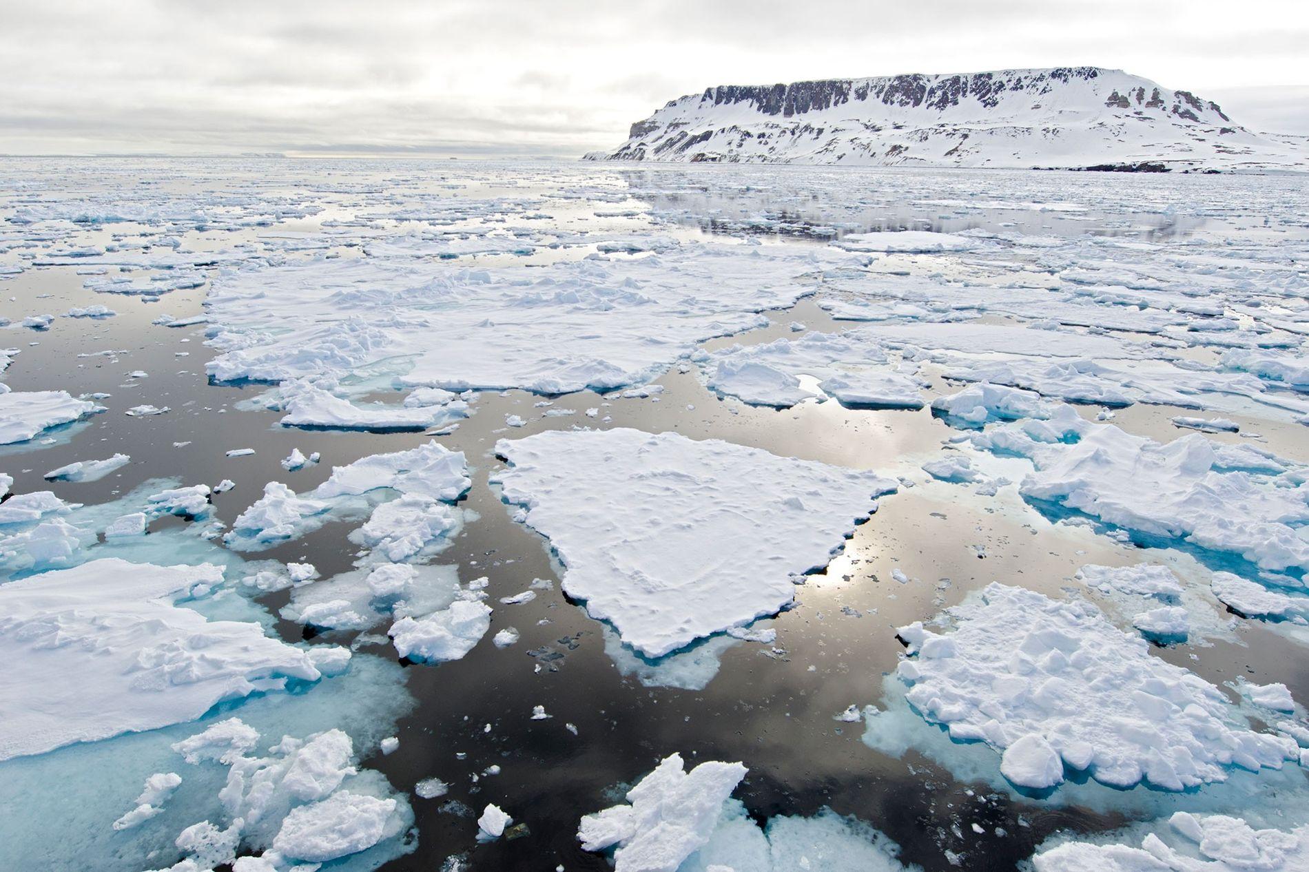 El hielo del Ártico se está haciendo más delgado a medida que el planeta se calienta.