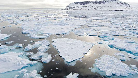 El nivel de hielo marino en el Ártico es el segundo más bajo de la historia