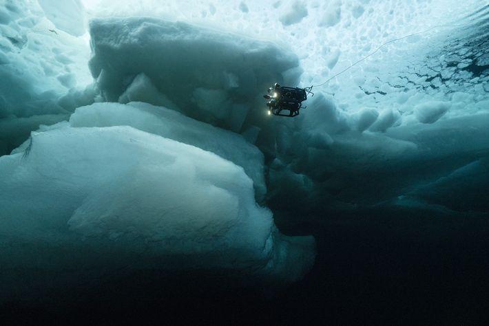 Un vehículo de la NASA, operado de manera remota, investiga las aguas debajo de una lámina ...